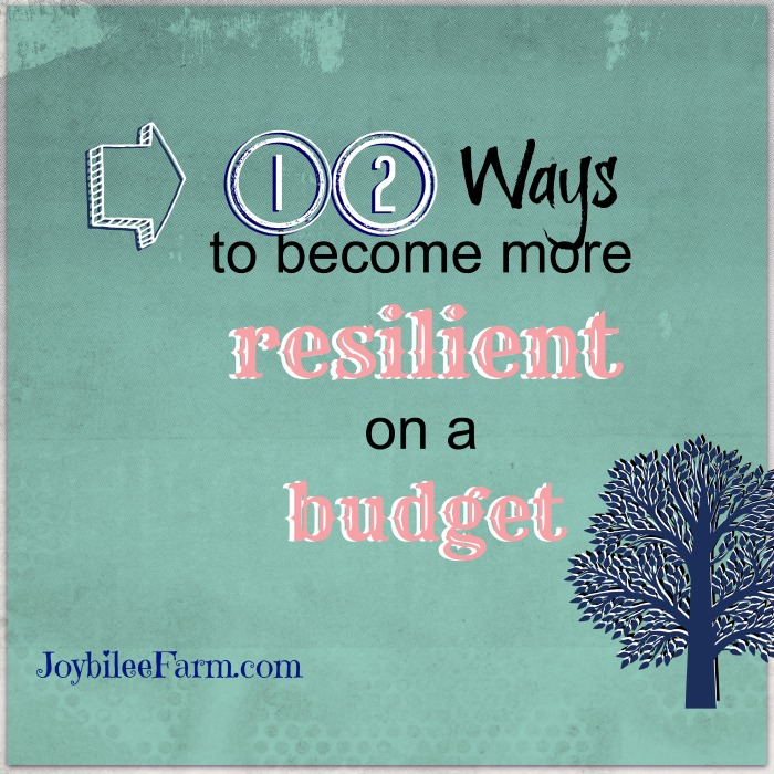 12 Ways to become more resilient on a budget
