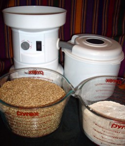 Grain Mill with wheat