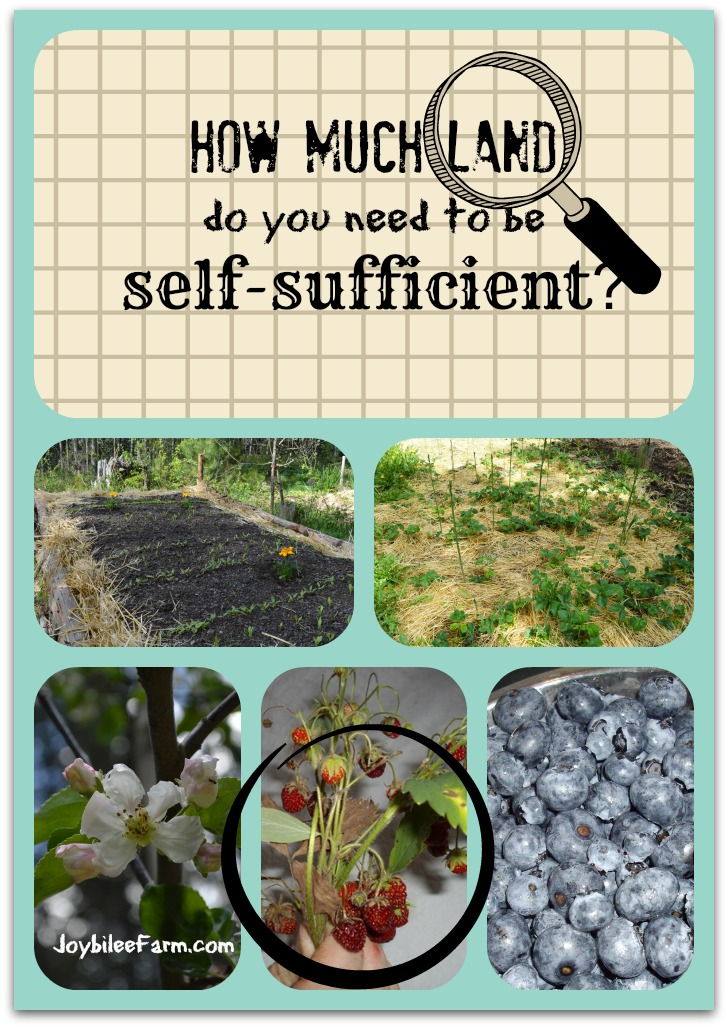 How Much Land Do You Need To Be Self Sufficient