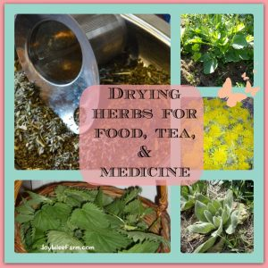 Food preservation:  Drying herbs for food, teas and medicine