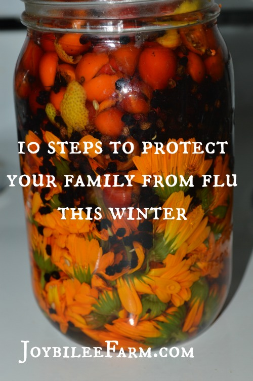 10 steps to protect your family from flu this winter -- Joybilee Farm