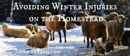 Avoiding Winter Injuries on the Homestead -- Joybilee Farm