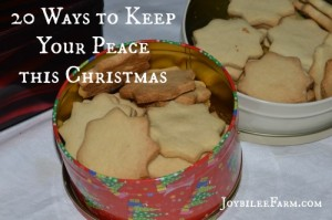20 Peace promoting strategies for Christmas
