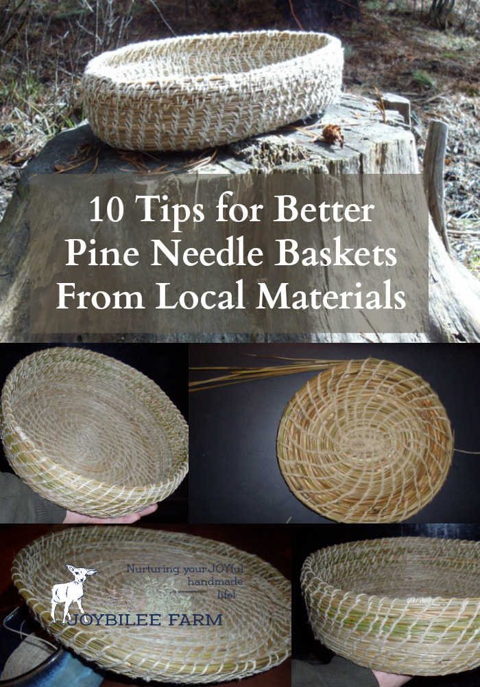 Gathering Basket Making Materials : Tips for better pine needle baskets from local