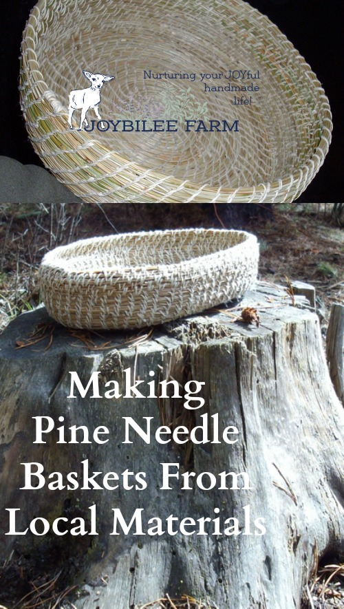 Gather local pine needles and turn them into beautiful baskets with these easy instructions.