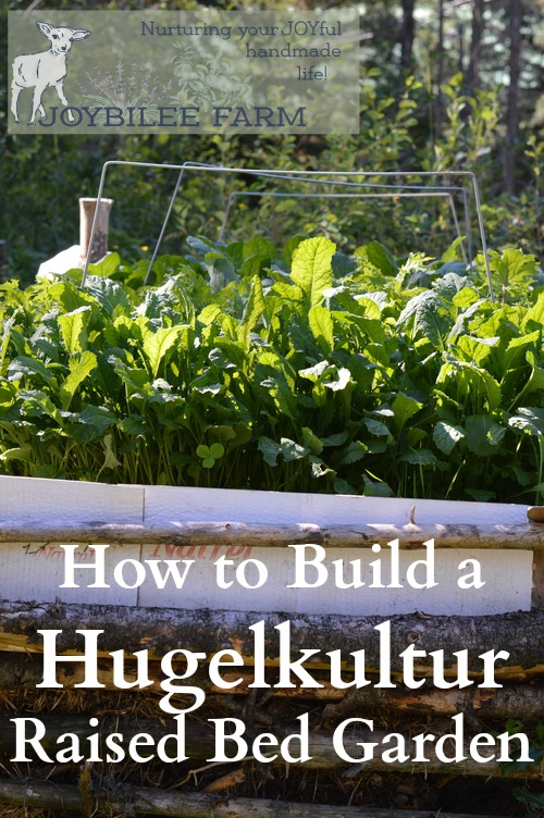 Hugelcultur is an ancient form of composting that utilizes woody waste as the carbon substrata, to retain soil moisture and soil fertility. You can utilize the principles of hugelcultur by simply burying wood waste throughout your yard and garden, in order to increase the moisture holding capacity and fertility of your soil. It breaks down slowly over several seasons. A hugelcultur raised bed is a garden in its own right. It can be any size or shape that you wish, although most hugelcultur raised beds are rectangular.