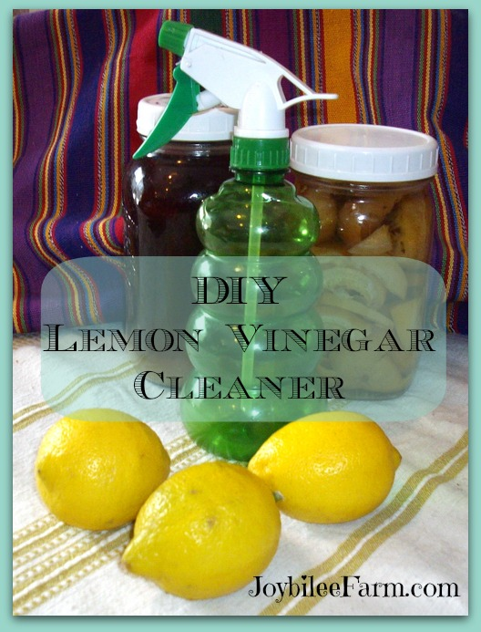 Dry Cleaning Dry Cleaning At Home And Cleaning On Pinterest
