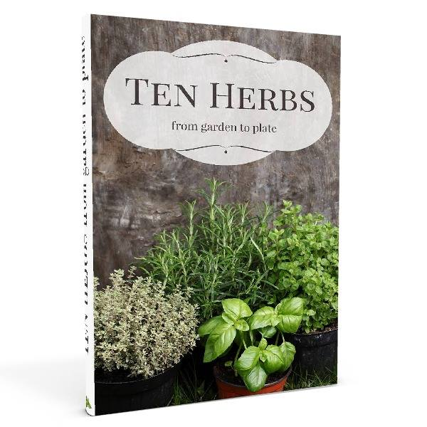 10 Herbs from Garden to Plate