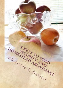 Worried about the economy and the food in your larder?  Grab my e-book