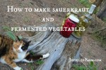 How to make Sauerkraut and other fermented vegetables