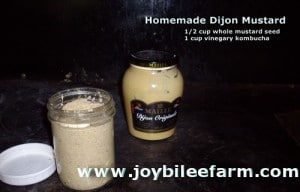 Make your own easy Dijon Mustard
