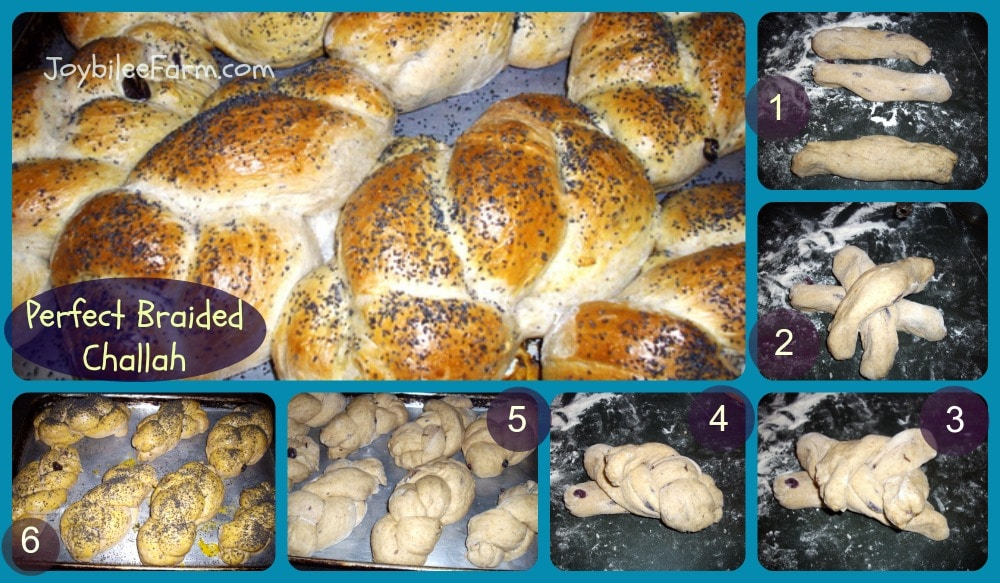 Challah collage