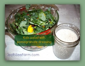 Fall Kale salad with  Pomegranate Dressing with a secret ingredient