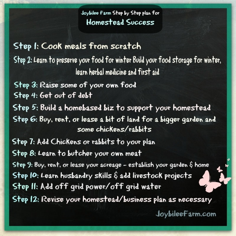 Step by step to homestead success