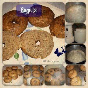 Lesson 4: How to make bagels