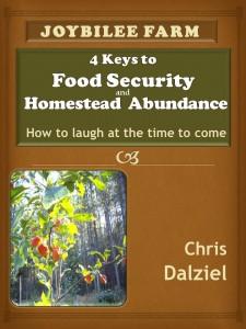 Food Security and Homestead Abundance Final