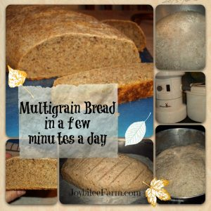 Multigrain bread in a few minutes a day