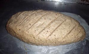 artisan bread rising