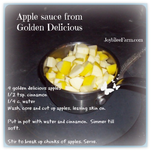 Applesauce info graphic