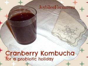 Cranberry kombucha