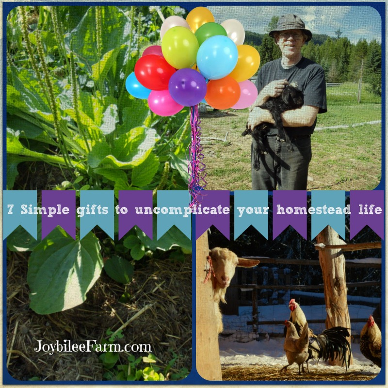 7 Simple gifts to uncomplicate your homestead life -- Part 1 of 2