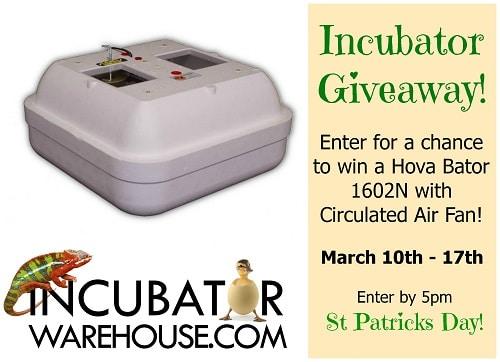 Hova-Bator Incubator Giveaway