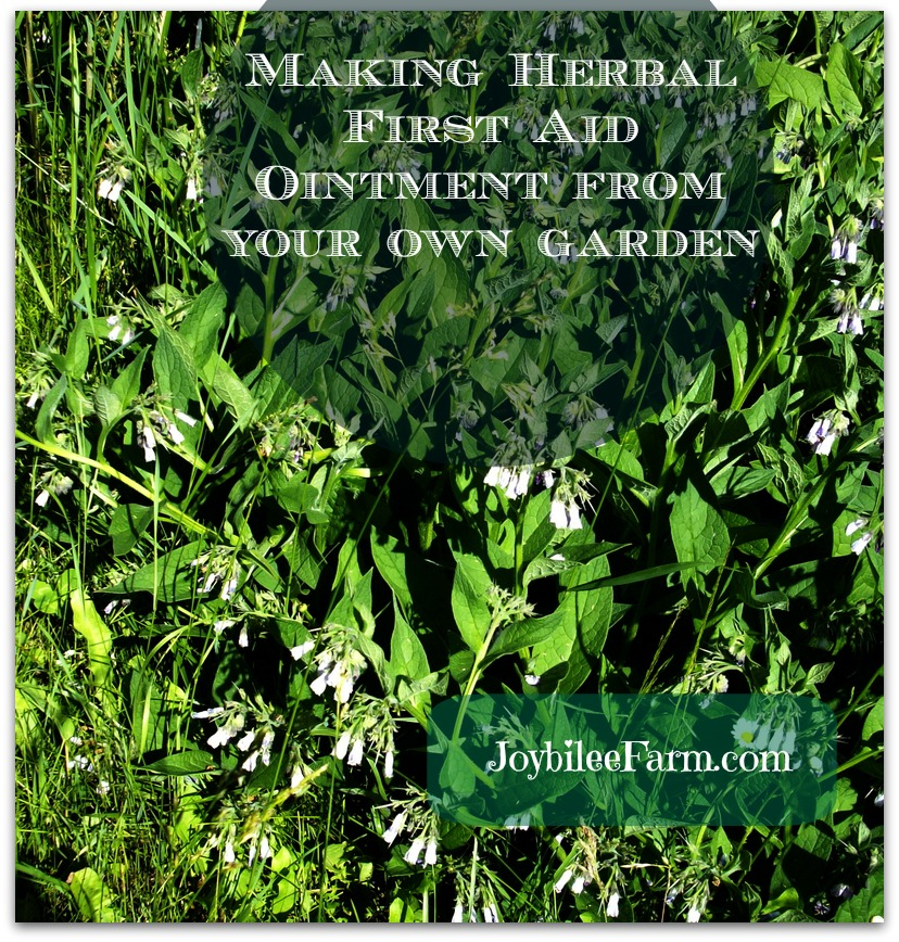 Making herbal ointments