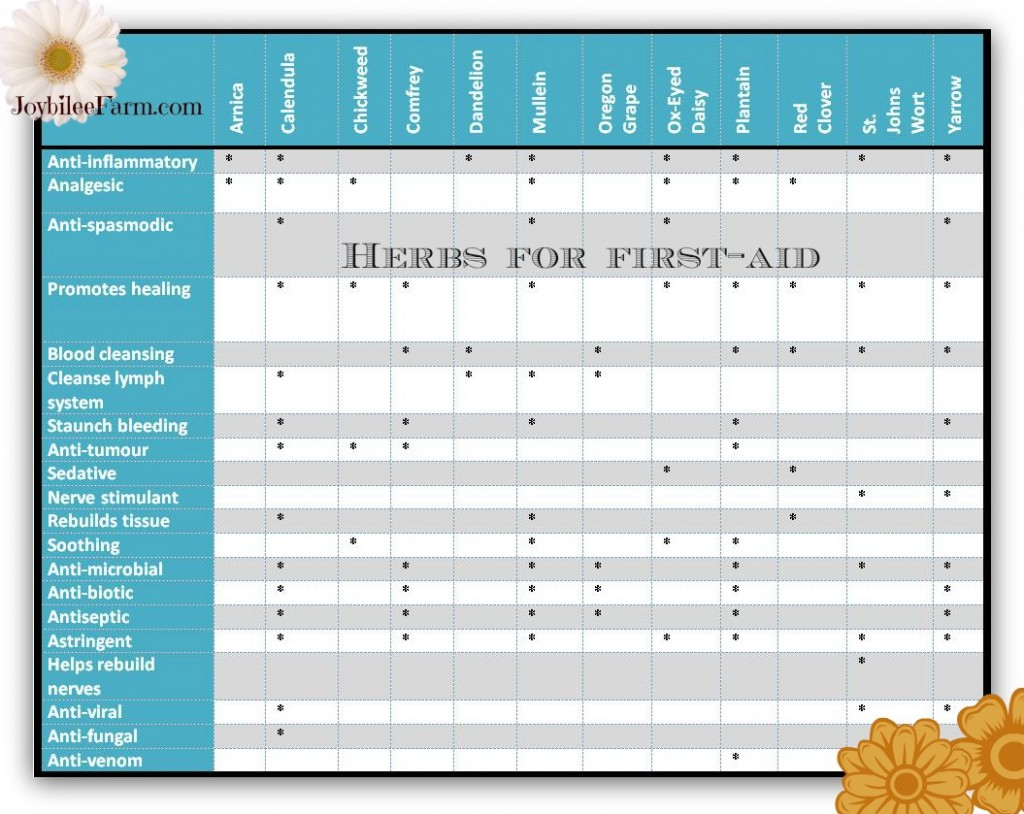 herbal chart for skin ointment