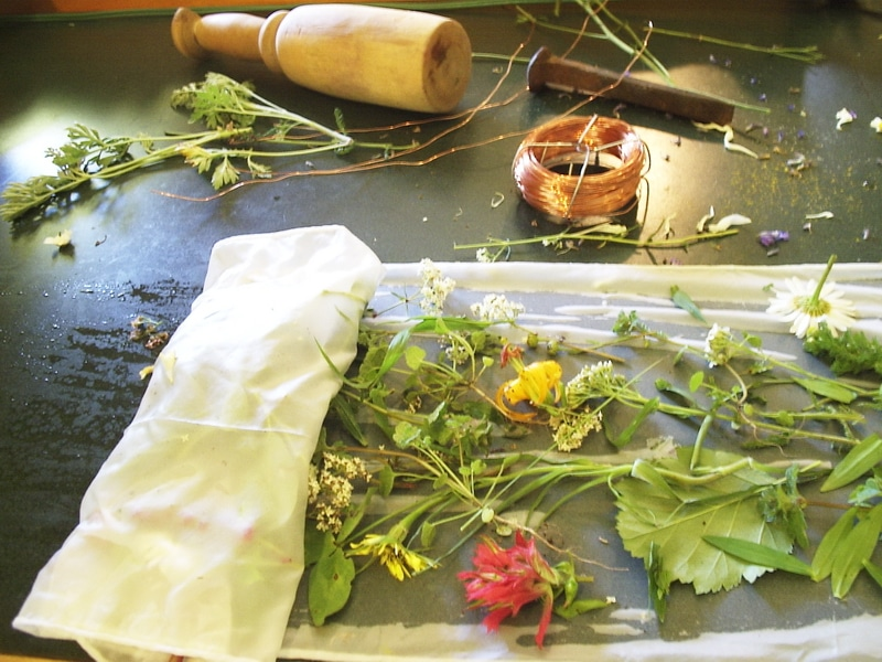 Direct Contact Dyeing with weeds