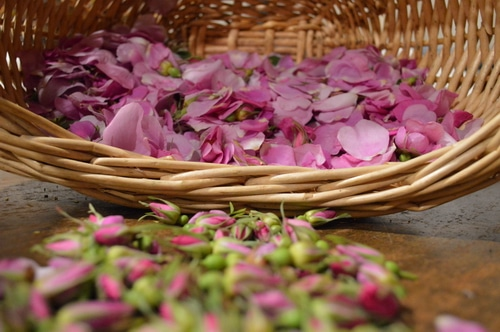 rose honey petals in a basket