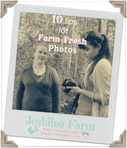 10 tips for Farm Fresh Photos