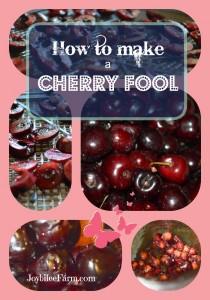 How to make a Cherry Fool -- Joybilee Farm