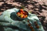 Cherry tomatoes 1