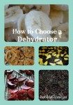 How to choose a dehydrator -- Joybilee Farm