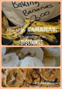How to dry bananas and take advantage of discounts. -- Joybilee Farm