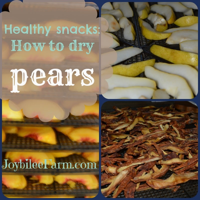 Healthy snacks: How to dry pears