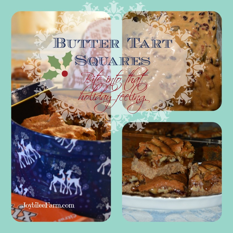 Butter Tart Square recipe - Joybilee Farm