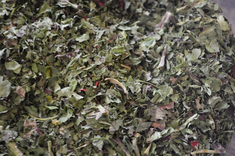dried kale for greens powder supplement
