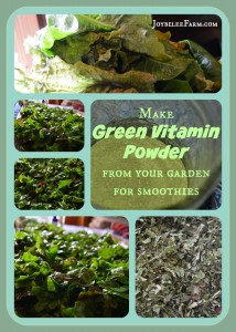 DIY Superfood greens supplement powder for smoothies -- Joybilee Farm
