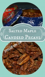 DIY Christmas Gifts — Salted Maple Candied Pecans