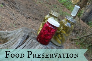 Category: Food Preservation