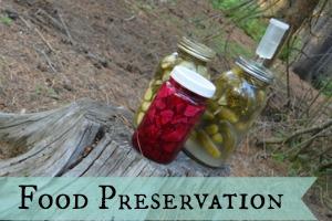 Category: Food Preservation
