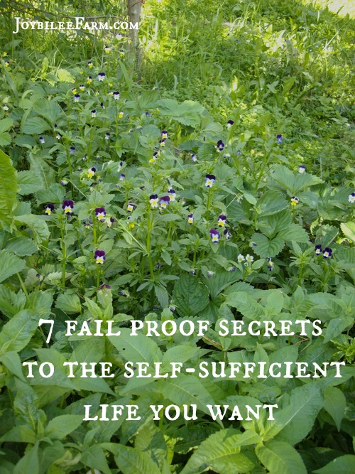 7 secrets to the self-sufficient life you want -- Joybilee Farm