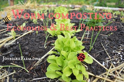 Worm Composting Best Practices -- Joybilee Farm