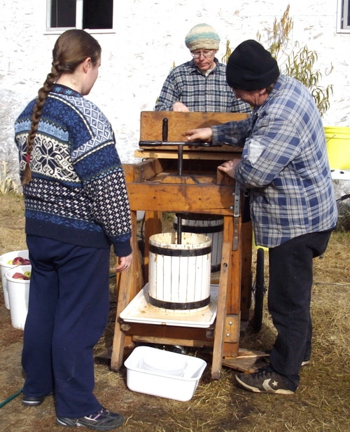 Apple cider pressing