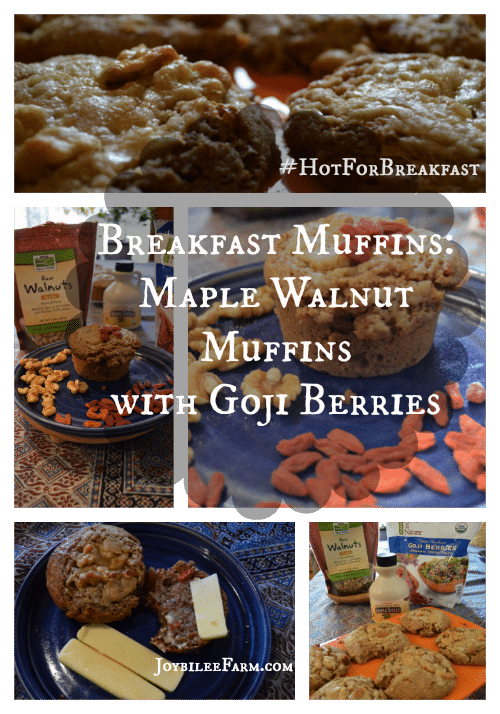 Breakfast muffin: Maple Walnut muffin with Goji Berries - Joybilee Farm