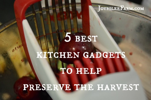 5 best kitchen gadgets to help preserve the harvest
