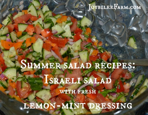 Summer salad recipes: Israeli salad recipe with fresh lemon-mint dressing -- Joybilee Farm