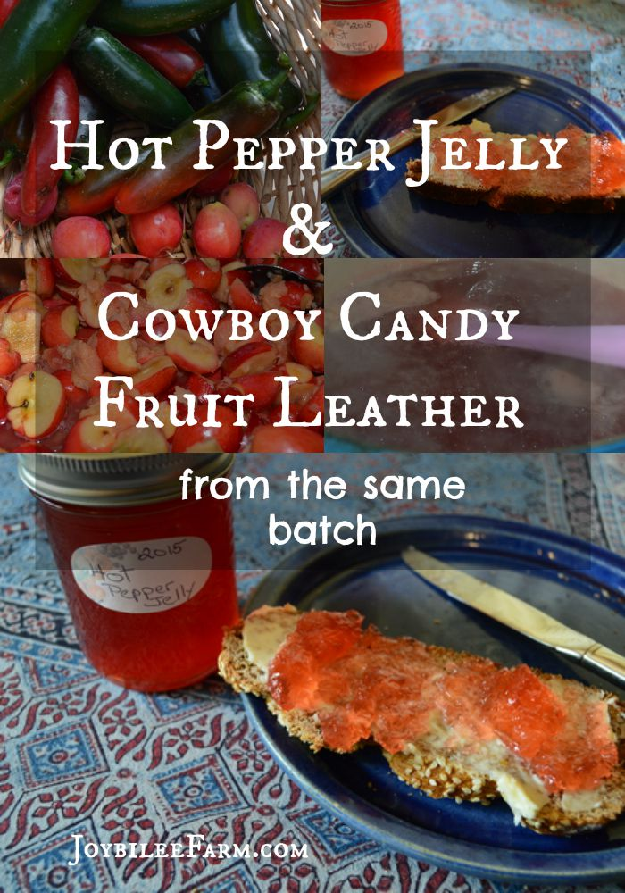 Hot pepper jelly and cowboy candy fruit leather