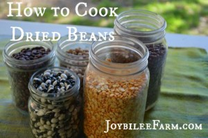How to cook dried beans, when you've only ever eaten canned beans